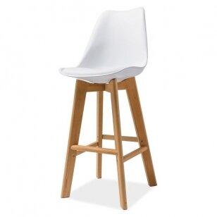 Baro Kėdė SK H-1