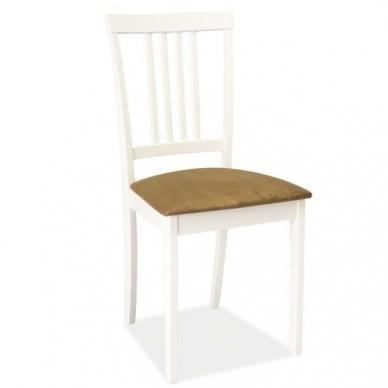 Kėdė SCD-63