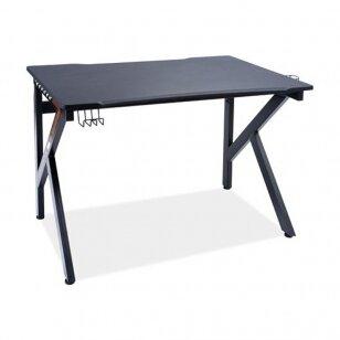 Rašomasis stalas B9
