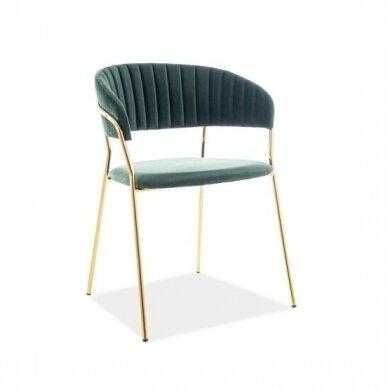 Kėdė Libet 12