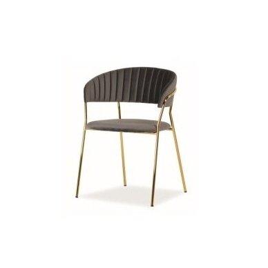 Kėdė Libet 10