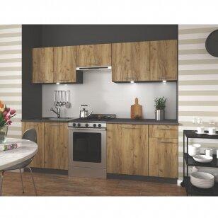 Virtuvės komplektas Daria 240