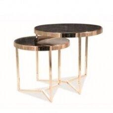 Žurnalinių staliukų rinkinys SDE II auksinis